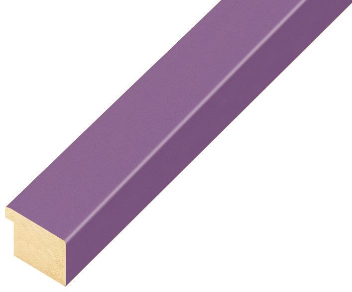 Corner sample of moulding 21VIOLA