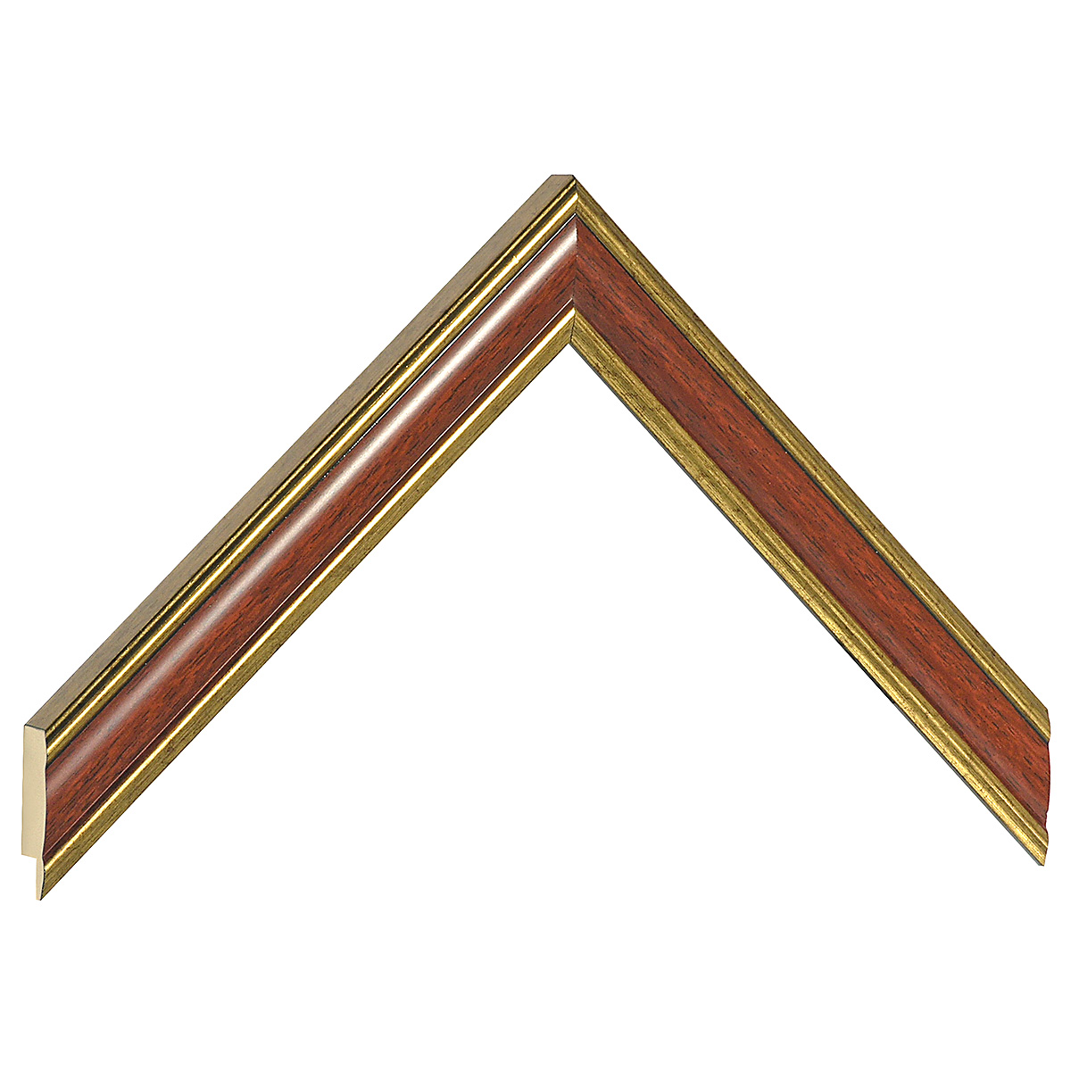 Moulding ayous - Width 23mm - Gold with mahogany band