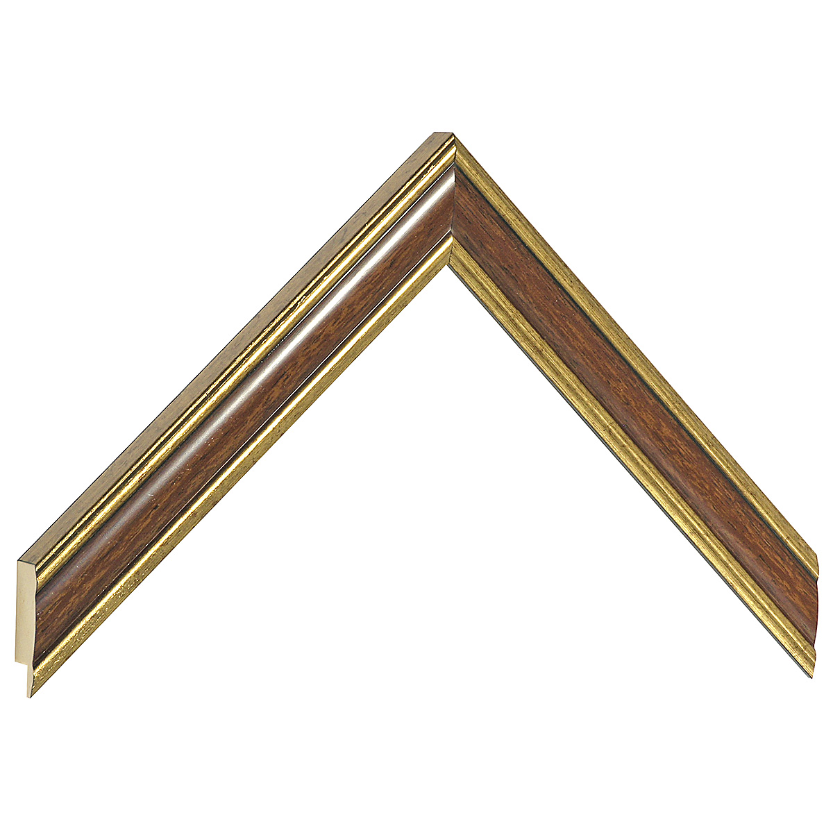 Moulding ayous - Width 23mm - Gold with walnut band