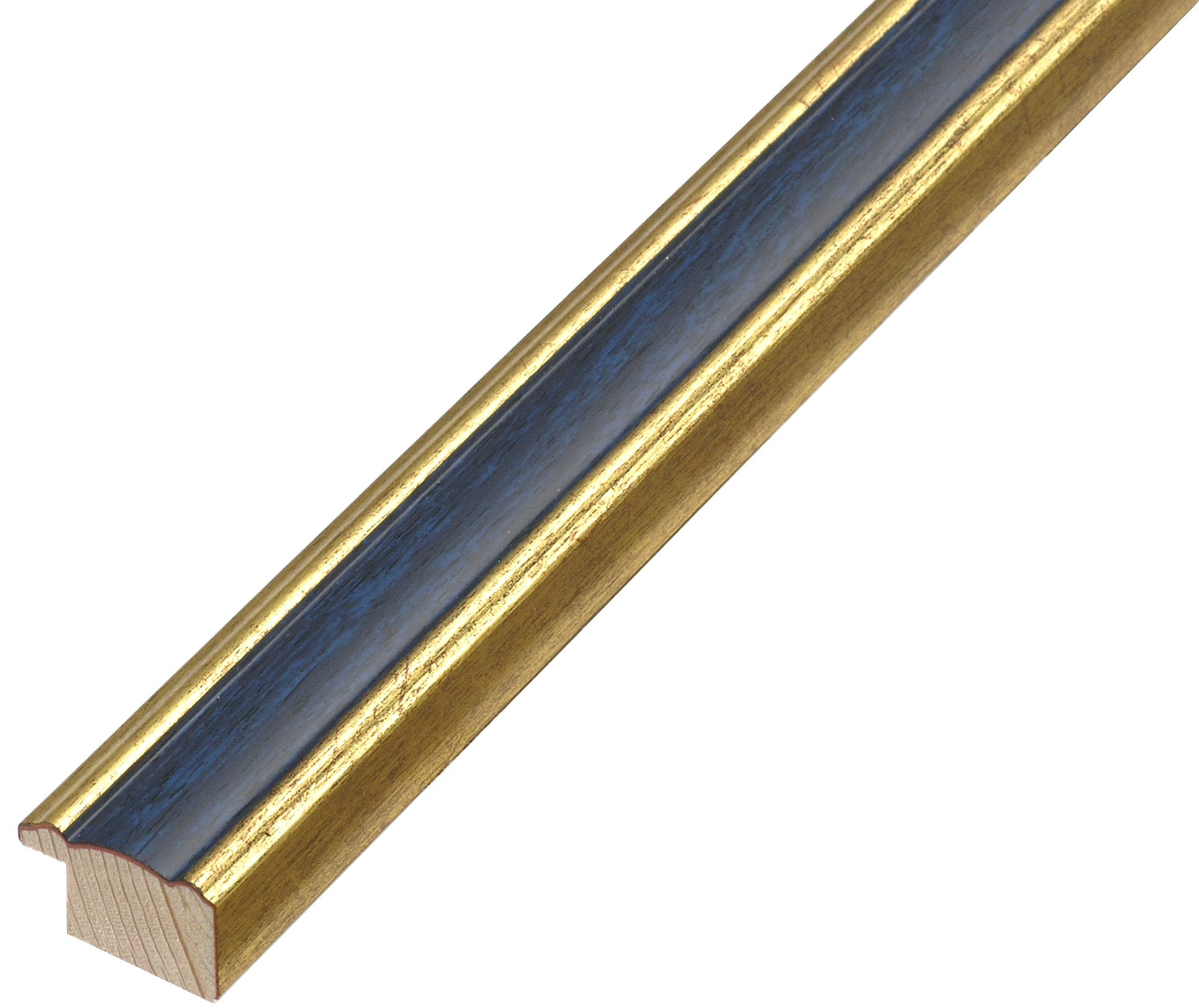 Moulding ayous - Width 23mm - Gold with blue band